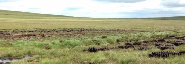 landschap met peat